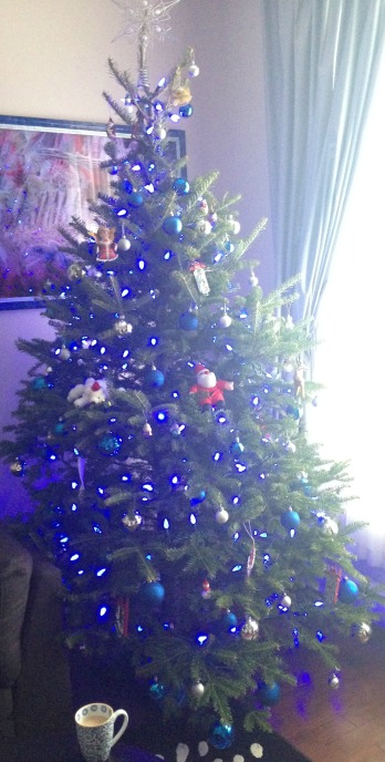 Christmas 2015 6