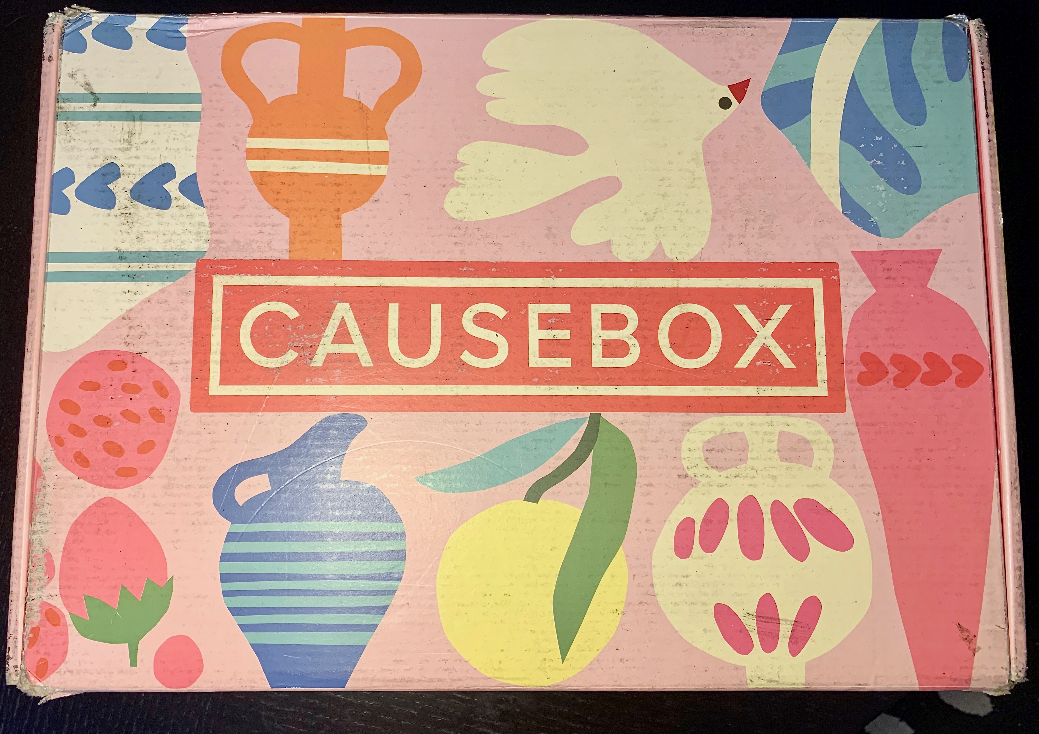 CauseBox Summer 1